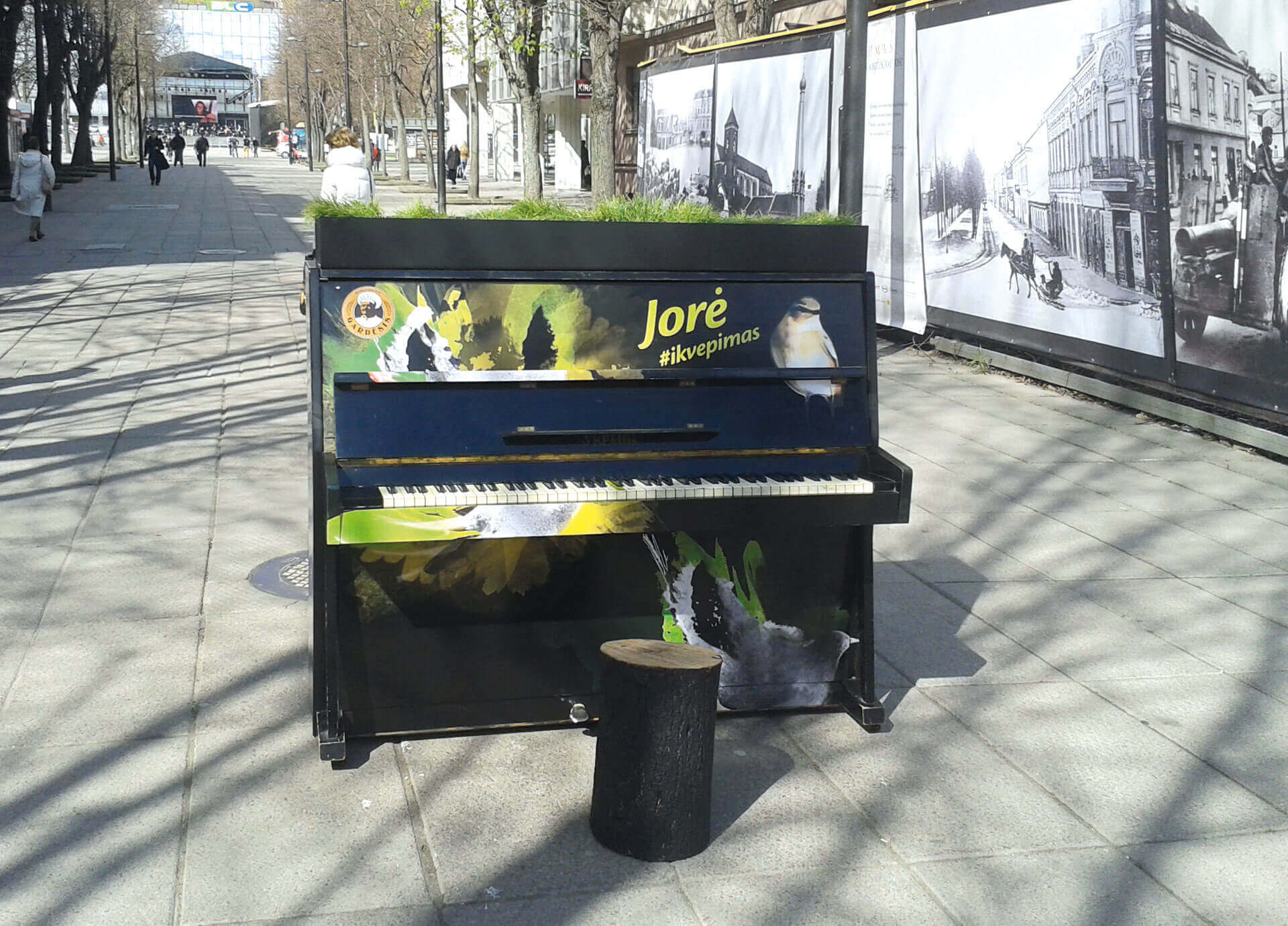 2_JORE-PIANINAS1920X1380