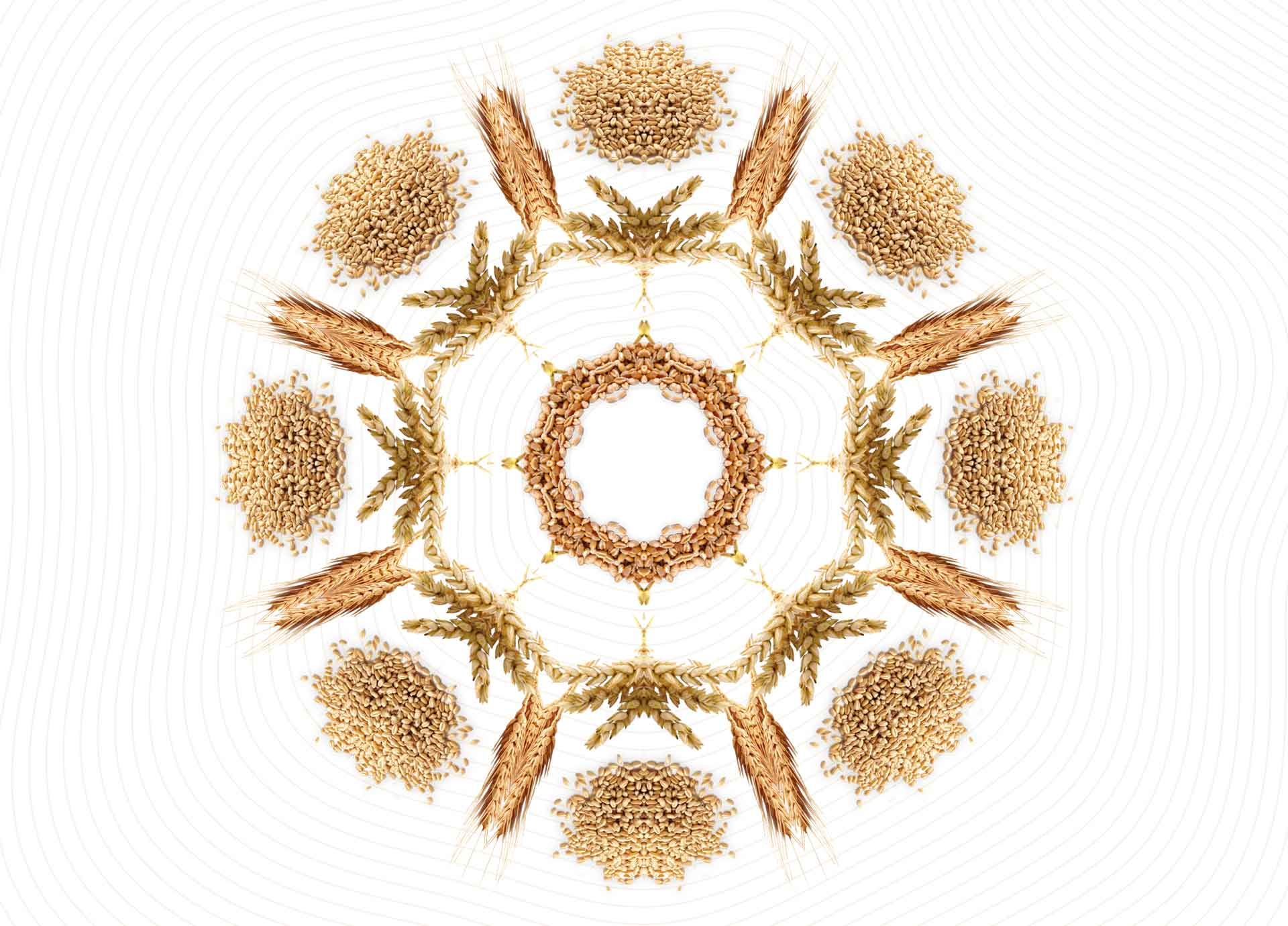 4_gero-apetito_PAKUOTES_kaleidoskopas_1920X1380-maz